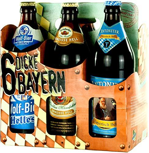 Genussleben Bier Mix 4,9-5,5% 12x 0,5l (Dicke Bayern 12er), Bierset, Biergeschenk für Männer mit...